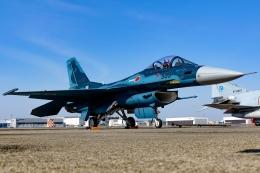 Ariesさんが、名古屋飛行場で撮影した航空自衛隊 F-2Aの航空フォト(写真)