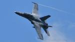 PaveHawk_Golfさんが、ランカウイ国際空港で撮影したマレーシア空軍 F/A-18D Hornetの航空フォト(写真)