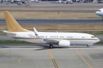 JA882Aさんが、羽田空港で撮影した南山公務 737-7ZH BBJの航空フォト(写真)