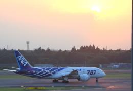 Dreamer-K'さんが、成田国際空港で撮影した全日空 787-8 Dreamlinerの航空フォト(写真)