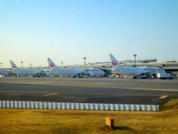 まいけるさんが、成田国際空港で撮影した日本航空 787-9の航空フォト(写真)