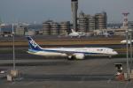職業旅人さんが、羽田空港で撮影した全日空 787-9の航空フォト(写真)