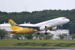 AokaiE531さんが、成田国際空港で撮影したバニラエア A320-214の航空フォト(写真)