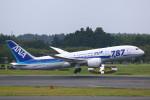 AokaiE531さんが、成田国際空港で撮影した全日空 787-881の航空フォト(写真)