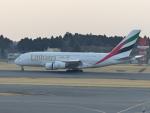 Snow manさんが、成田国際空港で撮影したエミレーツ航空 A380-861の航空フォト(写真)