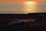 ミッキー2016さんが、中部国際空港で撮影したANAウイングス DHC-8-402Q Dash 8の航空フォト(写真)