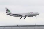 masa707さんが、ロンドン・ガトウィック空港で撮影したワモス・エア A330-243の航空フォト(写真)