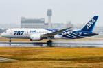 pinamaさんが、伊丹空港で撮影した全日空 787-881の航空フォト(写真)