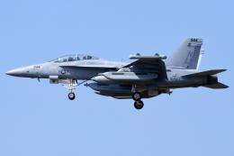 Flankerさんが、厚木飛行場で撮影したアメリカ海軍 EA-18G Growlerの航空フォト(写真)