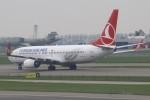 masa707さんが、アムステルダム・スキポール国際空港で撮影したターキッシュ・エアラインズ 737-8F2の航空フォト(写真)