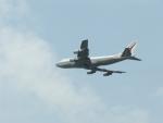 mealislandさんが、成田国際空港で撮影したエア・インディア 747-337Mの航空フォト(写真)