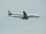 mealislandさんが、羽田空港で撮影した全日空 A321-131の航空フォト(写真)