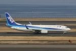 いぶき501さんが、羽田空港で撮影した全日空 737-881の航空フォト(写真)