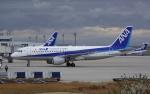 asuto_fさんが、大分空港で撮影した全日空 A320-211の航空フォト(写真)
