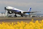 ぽんさんが、高松空港で撮影した全日空 777-281/ERの航空フォト(写真)