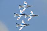Orange linerさんが、千歳基地で撮影した航空自衛隊 T-4の航空フォト(写真)