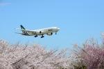 furuさんが、成田国際空港で撮影したアリタリア航空 777-243/ERの航空フォト(写真)