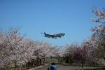 furuさんが、成田国際空港で撮影したスカンジナビア航空 A340-313Xの航空フォト(写真)