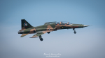 Stanley Chenさんが、RCQSで撮影した中華民国空軍 F-5F Tiger IIの航空フォト(写真)