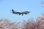 furuさんが、成田国際空港で撮影したアリタリア航空 A330-202の航空フォト(写真)