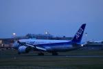門ミフさんが、佐賀空港で撮影した全日空 787-8 Dreamlinerの航空フォト(写真)