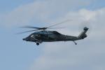 夏みかんさんが、名古屋飛行場で撮影した航空自衛隊 UH-60Jの航空フォト(写真)