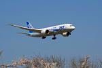 ppuw43さんが、成田国際空港で撮影した全日空 787-8 Dreamlinerの航空フォト(写真)