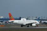 ja007gさんが、成田国際空港で撮影したトランスアジア航空 A320-232の航空フォト(写真)