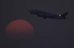 planetさんが、中部国際空港で撮影したボーイング 747-409(LCF) Dreamlifterの航空フォト(写真)