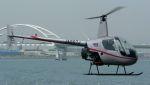 航空見聞録さんが、舞洲ヘリポートで撮影した日本個人所有 R22 Beta IIの航空フォト(写真)