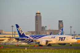 いえでんさんが、成田国際空港で撮影した全日空 787-881の航空フォト(写真)