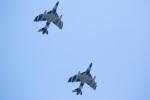 チャッピー・シミズさんが、厚木飛行場で撮影したATAC Hunter F.58の航空フォト(写真)