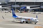 なないろさんが、中部国際空港で撮影した全日空 737-881の航空フォト(写真)