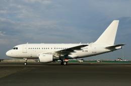 スポット110さんが、羽田空港で撮影したケイマン諸島企業所有 A318-112 CJ Eliteの航空フォト(写真)