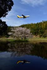 ポン太さんが、成田国際空港で撮影したエアー・ホンコン A300F4-605Rの航空フォト(写真)