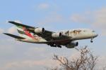 せぷてんばーさんが、成田国際空港で撮影したエミレーツ航空 A380-861の航空フォト(写真)
