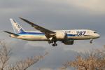 せぷてんばーさんが、成田国際空港で撮影した全日空 787-881の航空フォト(写真)