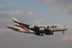 Rsaさんが、成田国際空港で撮影したエミレーツ航空 A380-861の航空フォト(写真)