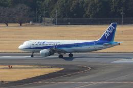 Koenig117さんが、成田国際空港で撮影した全日空 A320-211の航空フォト(写真)
