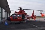 筑波のヘリ撮りさんが、立川飛行場で撮影した東京消防庁航空隊 AS365N2 Dauphin 2の航空フォト(写真)