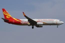 Wings Flapさんが、成田国際空港で撮影した海南航空 737-84Pの航空フォト(写真)