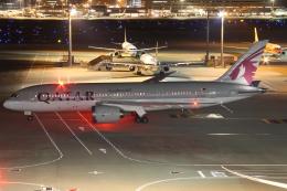 Wings Flapさんが、羽田空港で撮影したカタール航空 787-8DZの航空フォト(写真)