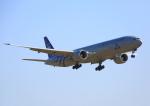 タミーさんが、成田国際空港で撮影したKLMオランダ航空 777-306/ERの航空フォト(写真)