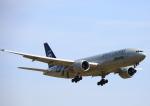 タミーさんが、成田国際空港で撮影したアリタリア航空 777-243/ERの航空フォト(写真)