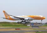 タミーさんが、成田国際空港で撮影したスクート 787-9の航空フォト(写真)