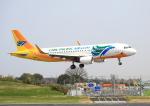 タミーさんが、成田国際空港で撮影したセブパシフィック航空 A320-214の航空フォト(写真)