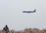 タミーさんが、成田国際空港で撮影したアメリカン航空 777-223/ERの航空フォト(写真)