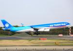 タミーさんが、成田国際空港で撮影したエア・タヒチ・ヌイ A340-313Xの航空フォト(写真)
