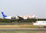 タミーさんが、成田国際空港で撮影した全日空 777-381/ERの航空フォト(写真)