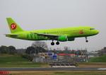 タミーさんが、成田国際空港で撮影したS7航空 A320-214の航空フォト(写真)